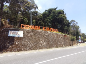 Basecamp Cemorokandang (Dok : Pribadi)