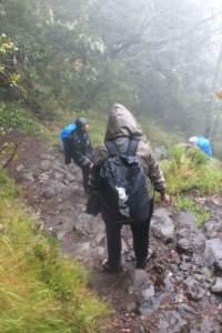 Pendakian Lawu ditemani hujan, 27-28 Desember 2014 (Dok : Pribadi)